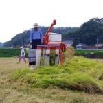お米収穫_1